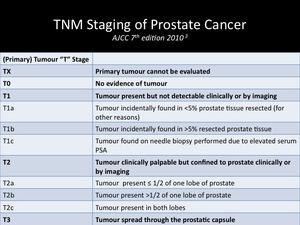 prostate tumor staging mri)