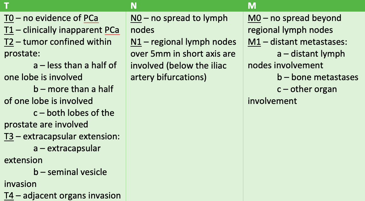 prostate cancer tnm staging